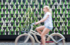 Green Bonds for Cities